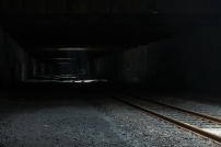 Tunnel Vison -7973